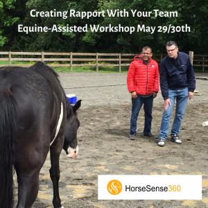 Creating Rapport With Your Team Workshop May 29 30th